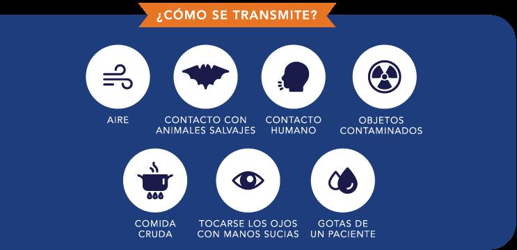 Corona-Virus-como-se-transmite